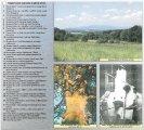 Památné stromy a významné krajinné prvky POMALŠÍ