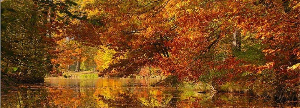 Řeka Malše - romantická kráska